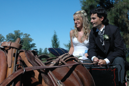 wedding-horse-carriage